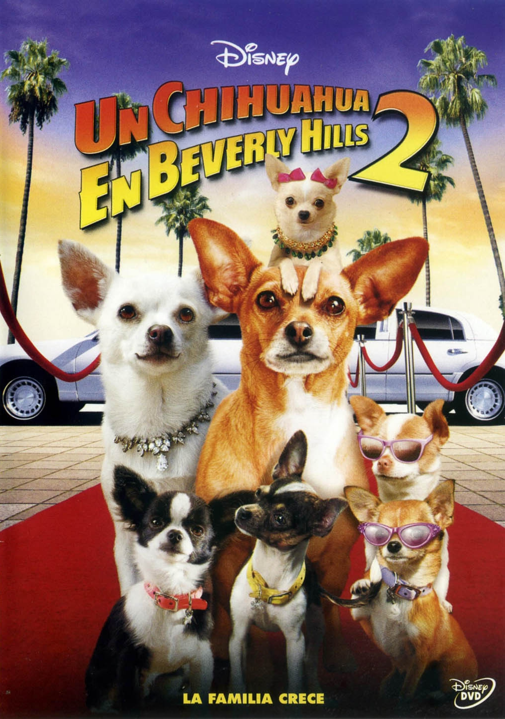 Un Chihuahua en Beberly Hills 2 Corte 1